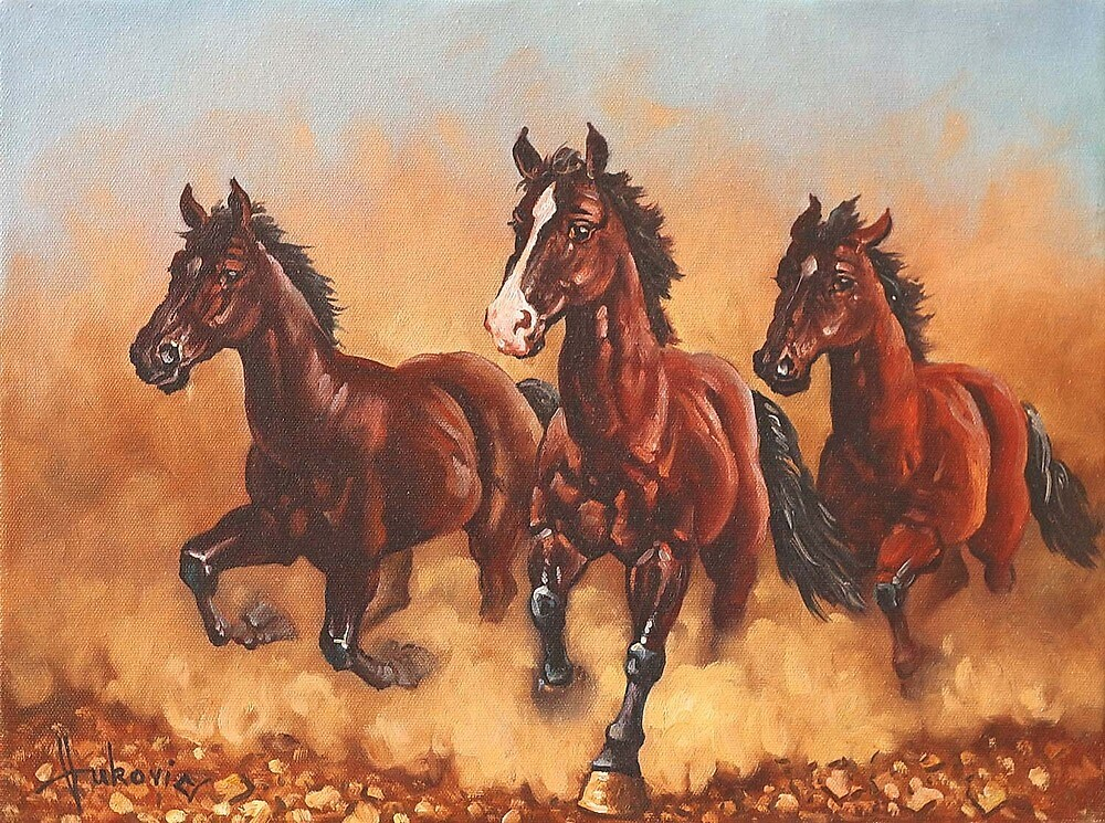 Horses by dusanvukovic