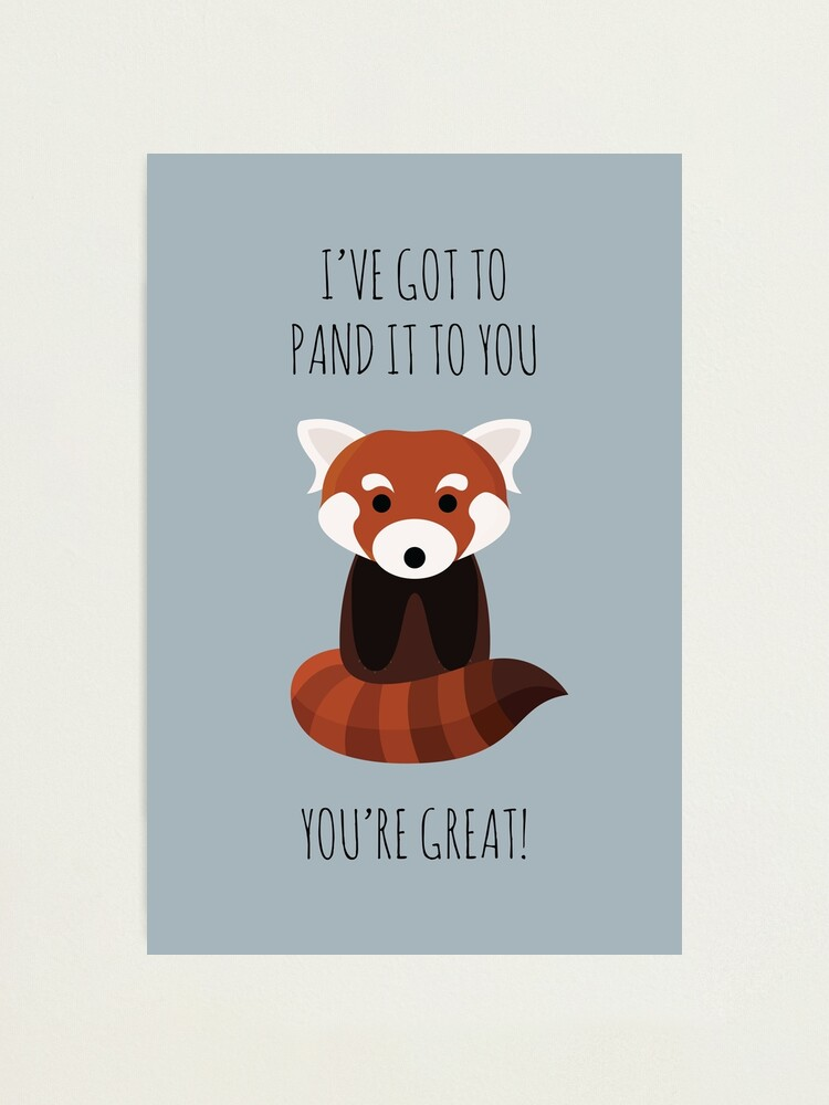 Alternate view of Red Panda Thinks You're Great Photographic Print