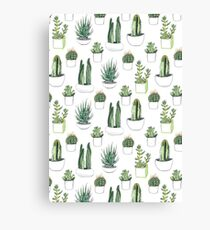 Watercolour cacti & succulents Canvas Print