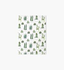 Watercolour cacti & succulents Art Board