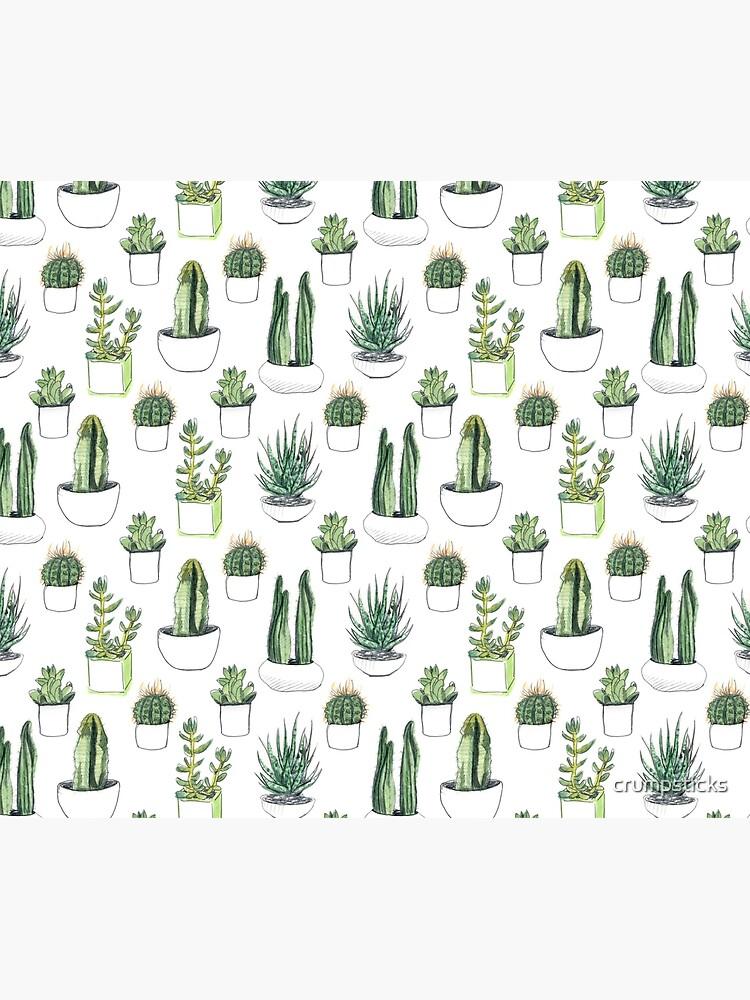 Watercolour cacti & succulents by crumpsticks