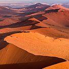 The Namibian Sand Sea by Mieke Boynton