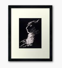Phantom Framed Print