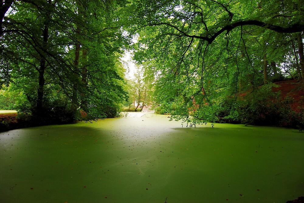 Green by Micha
