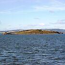 Crammond Island, Edinburgh by Verity Barnes