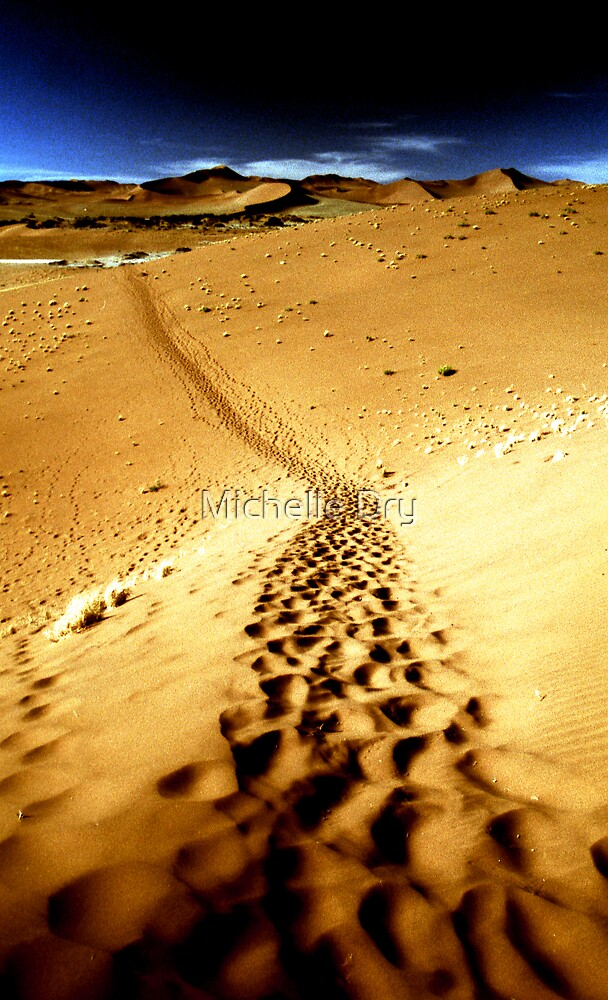 Footprints by Michelle Dry