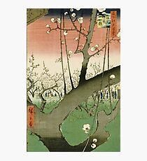 Hiroshige - Plum Garden, Kameido Photographic Print