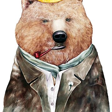 Brown Bear by AnimalCrew