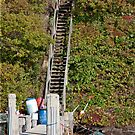 Wooden Stairs by phil decocco