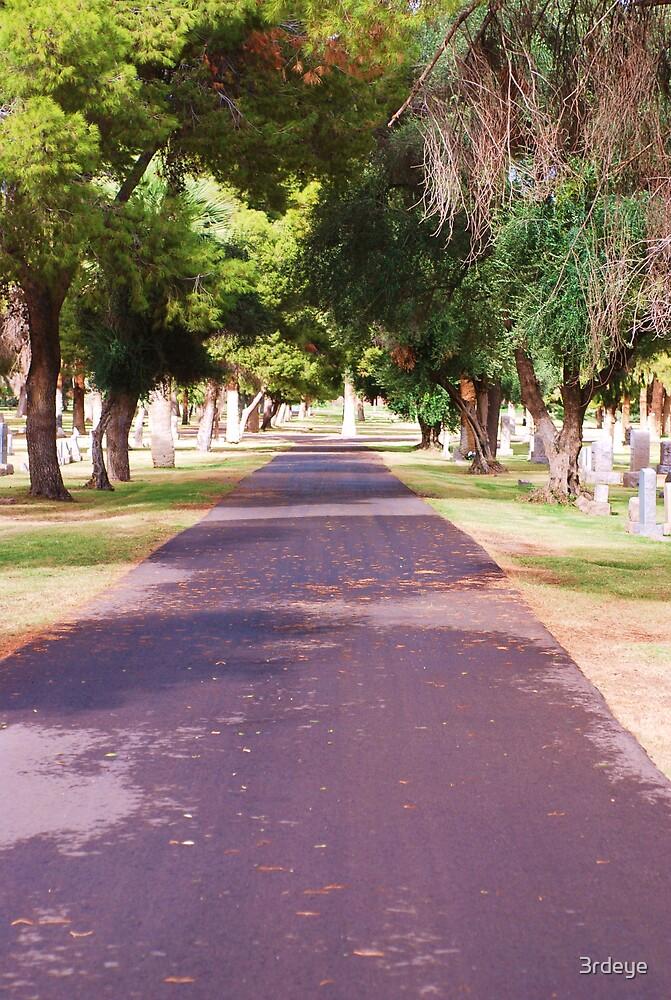 graveroad by 3rdeye