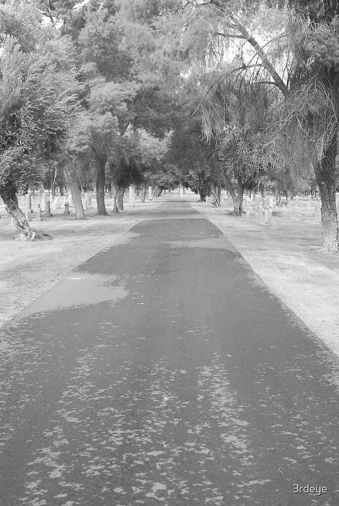 graveroad blk&wht by 3rdeye