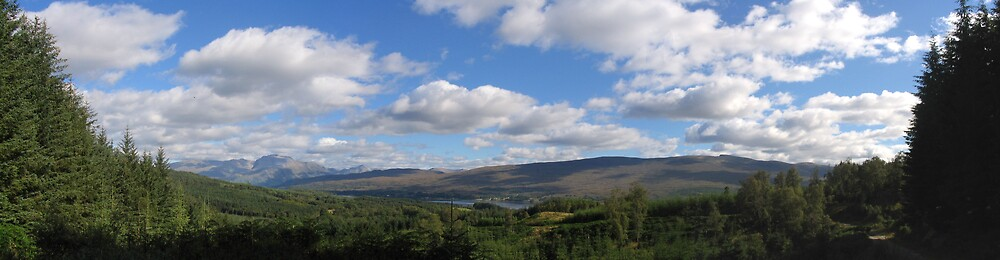 Panoramic of Sottish forests by nybo