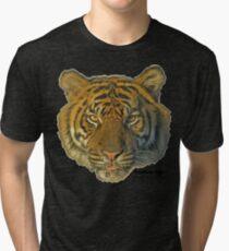 Sumatran tiger Tri-blend T-Shirt