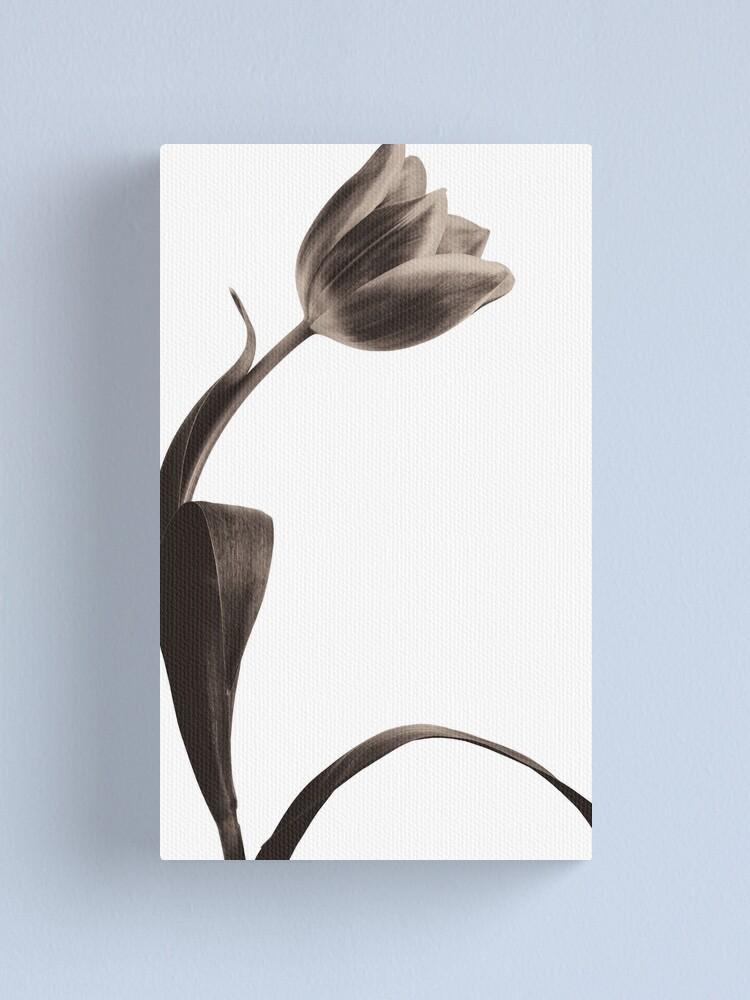 Alternate view of Antique Tulip Canvas Print