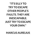 MARCUS AURELIUS  Stoic Philosophy Quote: It's silly to try to escape other people's faults. They are inescapable. Just try to escape your own by IdeasForArtists