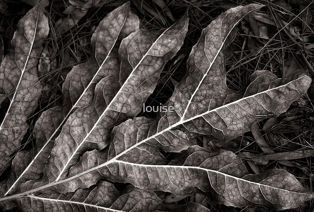 leaf 2 by louise
