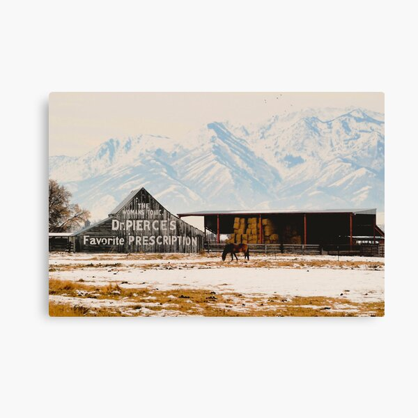 Logan Americana Canvas Print