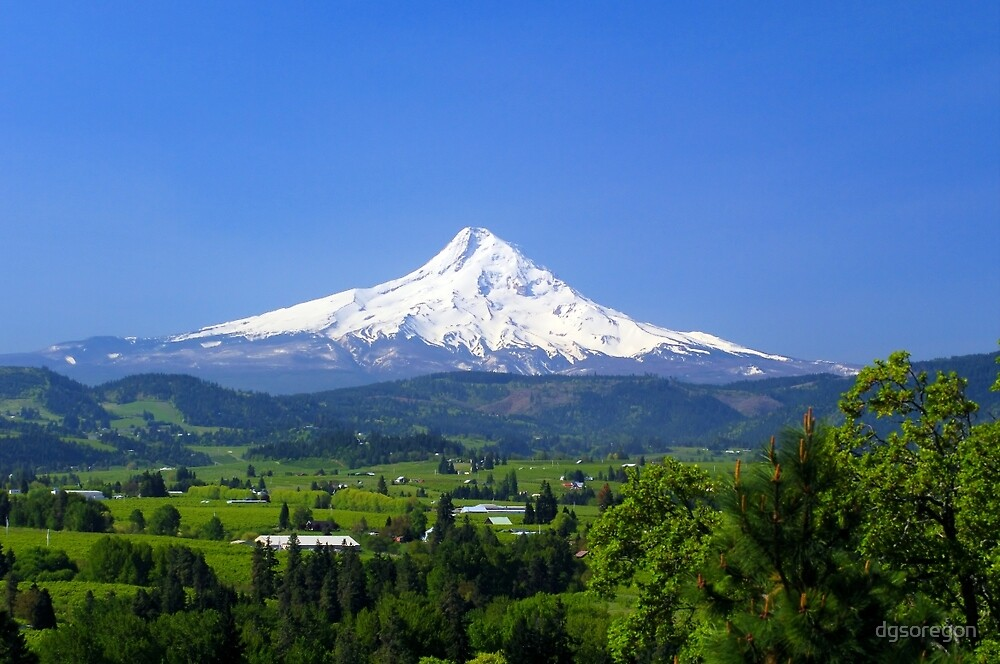 Mt Hood and The Hood River Valley by Donald Siebel
