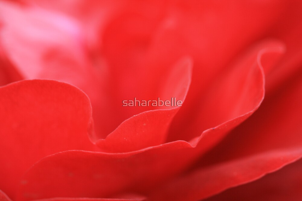 Subdued by saharabelle