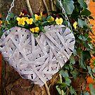 Viola Heart by ElsT
