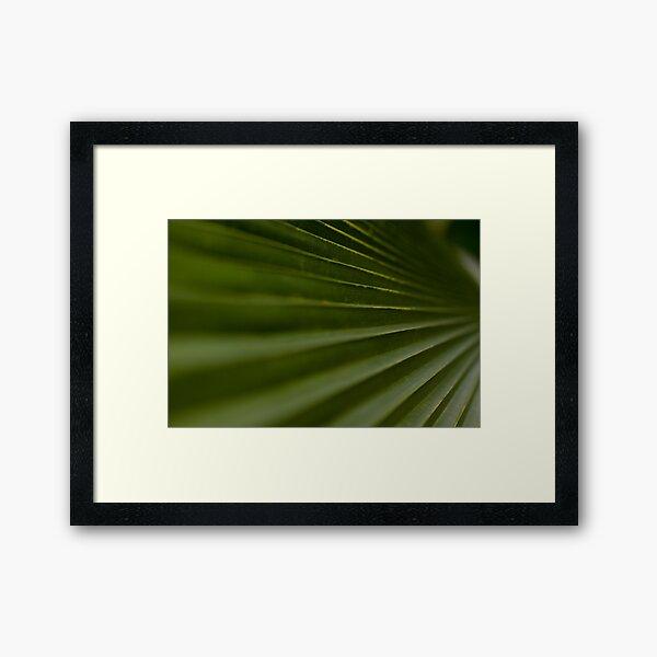 Leaf Steps Framed Art Print