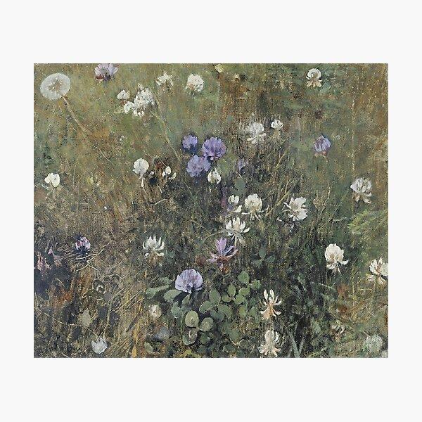 Jac Van Looij - Blooming Clover, 1897 Photographic Print