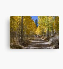 Autumn in the Eastern Sierra Canvas Print
