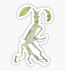 Pickett The Bowtruckle Sticker