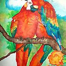 parrot couple by Briana  G.