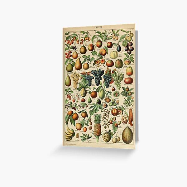 fruit vintage illustration Greeting Card