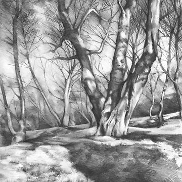 Musing of Trees by kkmiecikart