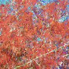 Autumn Abstract - Mount Wilson NSW - The HDR Experience by Philip Johnson