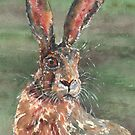 Hare by MotiBlack