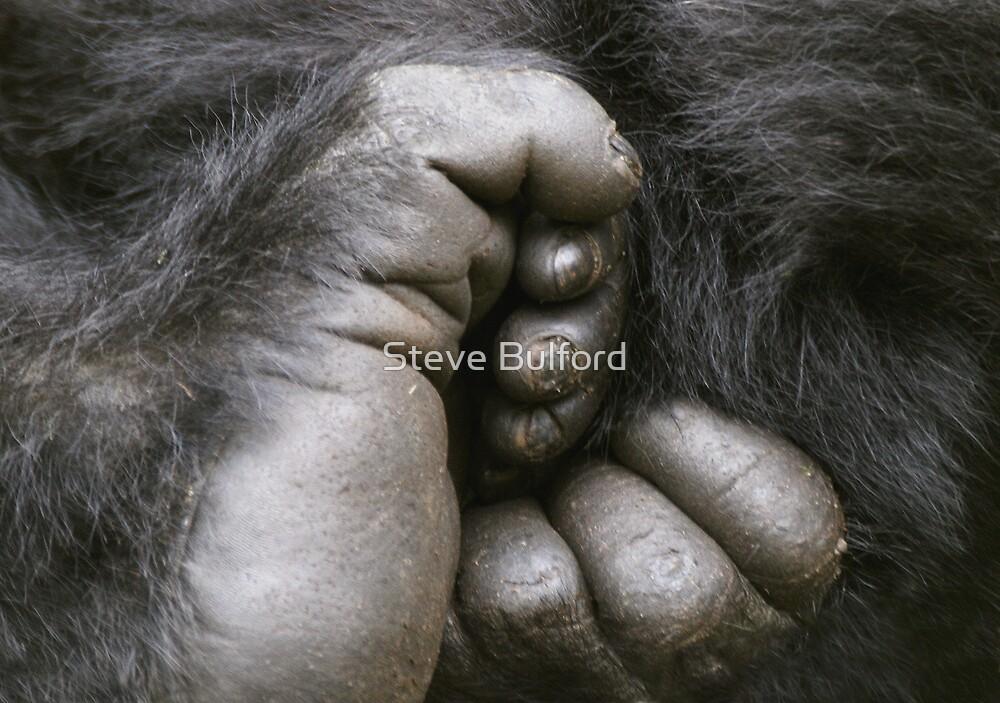 Gorilla Feet by Steve Bulford