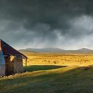 Old Currango Homestead, Kosciuszko National Park, New South Wales, Australia by Michael Boniwell