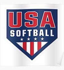 Vintage Team USA Softball Logo Poster