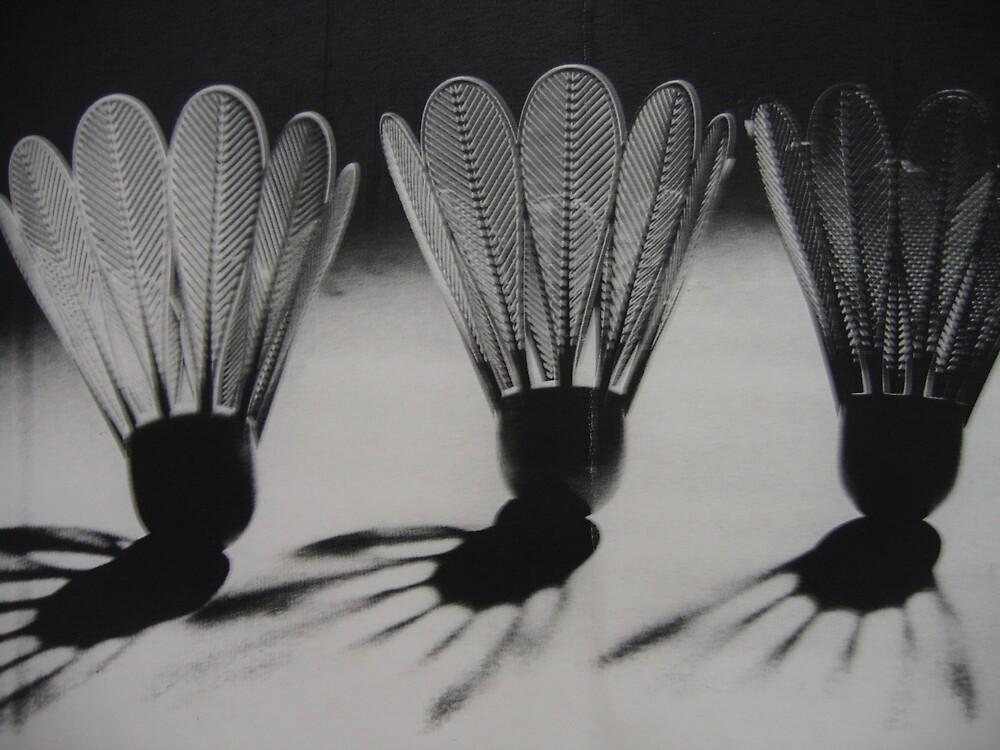 shuttlecock by Sallyrose