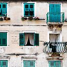 Teal shutters by VanessaHall