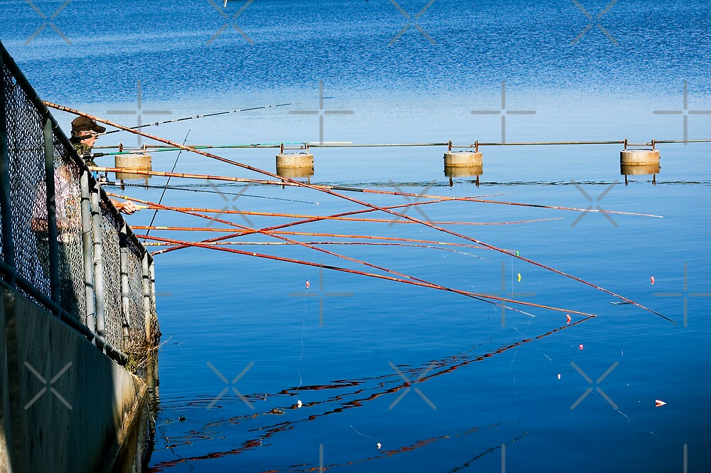Fishing Poles by Stacey Lynn Payne