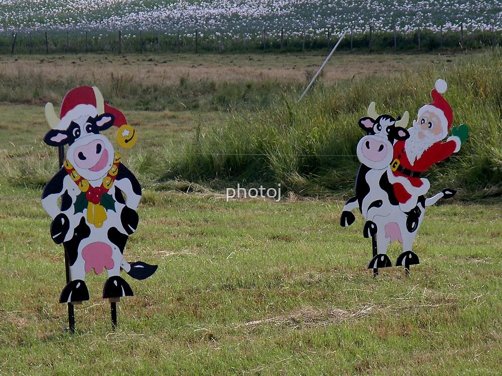 photoj Tas, Farm Animals Wish everyone,'Merry Xmas'   by photoj