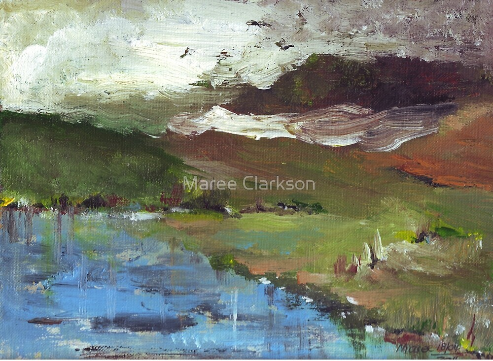 Winter moving in by Maree Clarkson