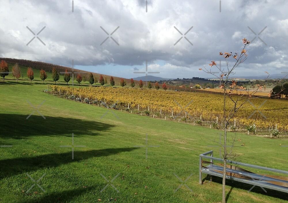 Vineyard by nadiairianto