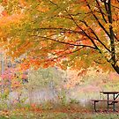 Panoramic view of autumn landscape by snehit