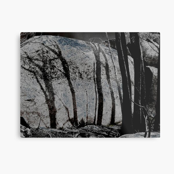 Burnt Shadows Metal Print
