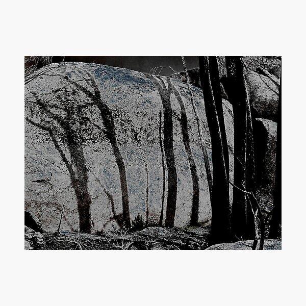 Burnt Shadows Photographic Print