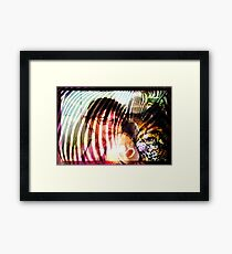 wild look Framed Print