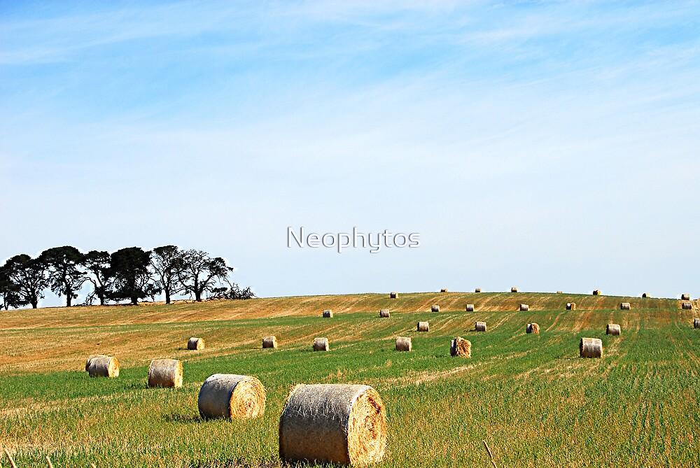 Harvest Trilogy by Neophytos