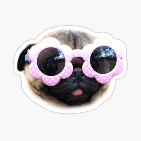 Pug With Glasses Sticker