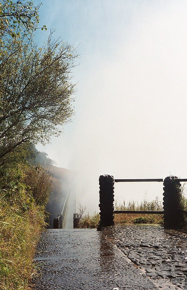 Spray from Victoria Falls by hilarydougill