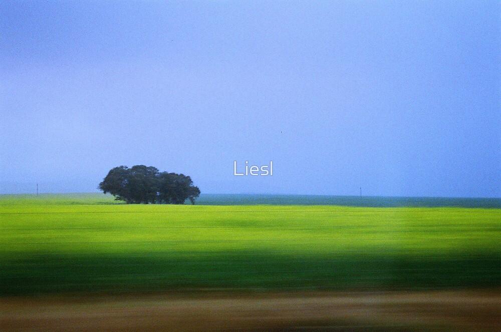 Green pastures by Liesl